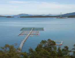 Nordsjø Fjordbruk AS, avdeling klungervik