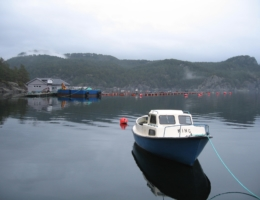 Lokaliteten Vintravik hos Rogaland Fjordbruk AS