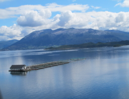 Tysnes Fjordbruk AS, lokalitet Ønarøy