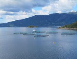 Tysnes Fjordbruk AS, avdeling Ystanes