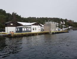 2020-02-27 Klungervik kai etter utbygging og fòrsiloer